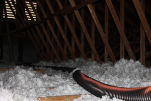 insulation cleanup